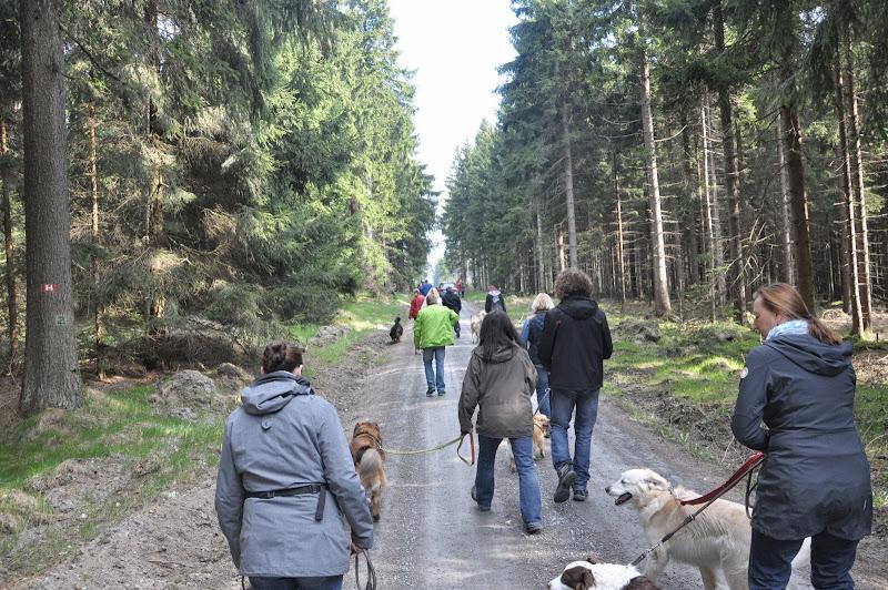 2014-04-13 - Waldführung am kleinen Waldstein (von Uwe Look) - DSC_0386.JPG