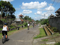 Eco Bike Tour - Ubud Region