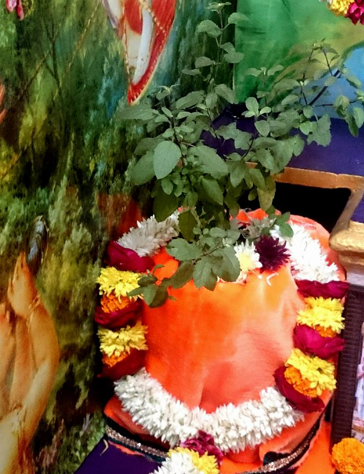 ISKCON Bhusawal Deity Darshan 23 Jan 2016 (4)