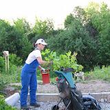 Измельчитель для садового мусора. Ветки, остающиеся от обрезки перерабатываются в щепу и в дальнейшем используются в виде мульчи