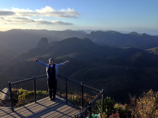 Coromandel Peninsula: Atop the Pinnacles