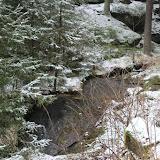 01. Januar 2016: Neujahrswanderung ins Waldnaabtal - IMG_1557.JPG
