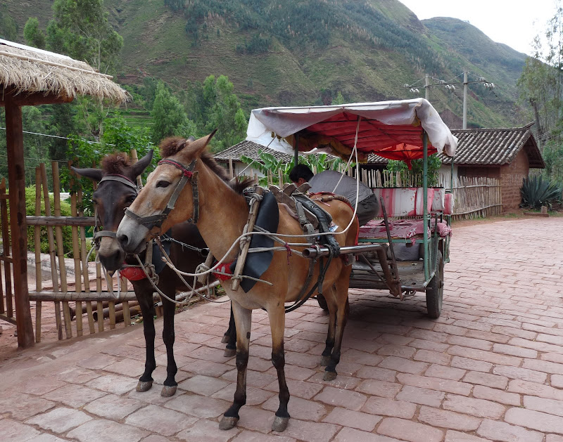Chine . Yunnan   HEI JING  (ancienne capitale du sel) - P1260594.JPG