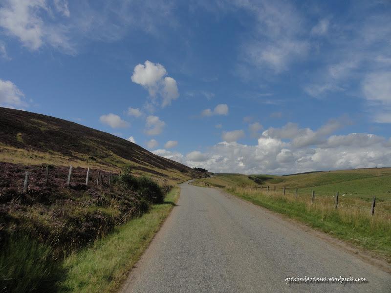 - Passeando até à Escócia! - Página 15 DSC03651