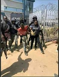 53 persons have been arrested by police in connection with the looting of properties – IGP
