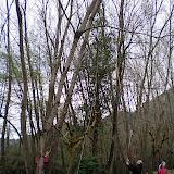 Campaments Amb Skues 2007 - ROSKU%2B004.jpg