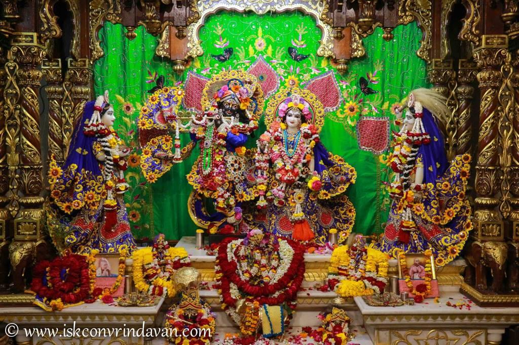 ISKCON Vrindavan Sringar Deity Darshan 01 Mar 2016 (15)