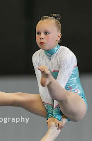 Han Balk Fantastic Gymnastics 2015-2001.jpg