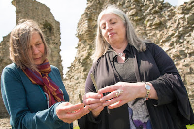 Mystery over castles Irish harp pins