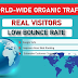 REAL ORGANIC TRAFFIC FOR 1 Month to YOUR WEBSITE THROUGH SOCIAL MEDIA MARKETING