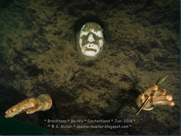 2018.06.30 Brechtsee - Copyright by Sascha Mueller 0010