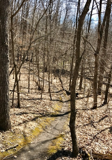 Twin Lakes singletrack. Hopefully opened mid to late April, weather permitting