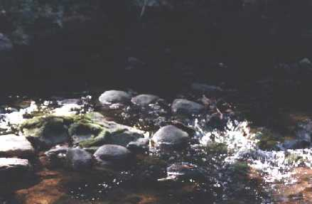 Boyne River