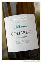 Forjas-del-Salnés-Goliardo-a-Telleria-2013