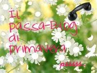 Passa Blog 2013