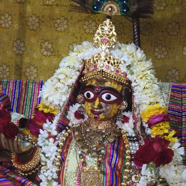Radha Govind Devji Deity Darshan 02 Mar 2016 (8)