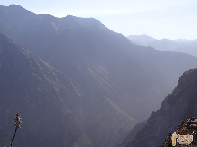 Visitar Cañón del Colca Peru 25