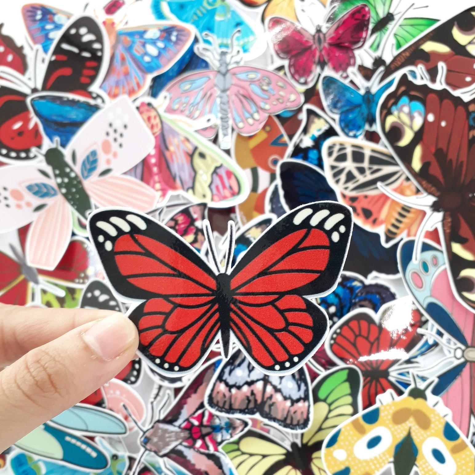 sticker côn trùng bươm bướm