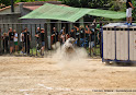013-peña taurina linares 2014 038.JPG