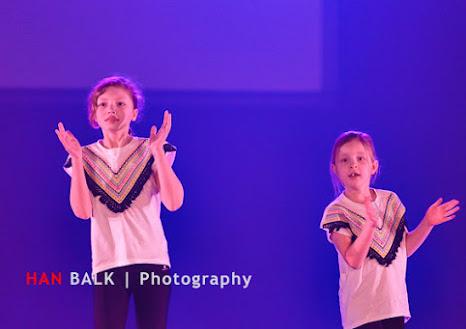 Han Balk Voorster Dansdag 2016-3276.jpg