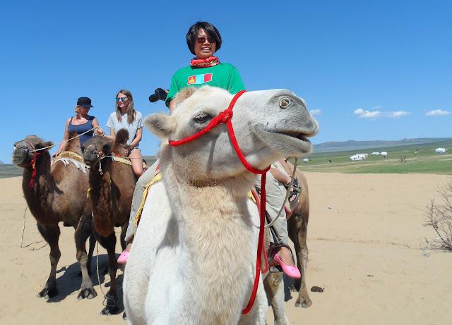 Kameelrijden bij Mongol Els.
