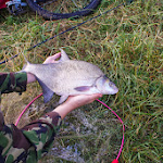 20140624_Fishing_BasivKut_009.jpg