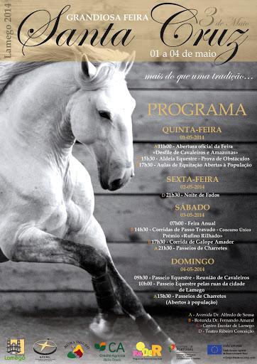 """Cavalo volta a ser """"rei e senhor"""" na Feira de Santa Cruz - 2014"""