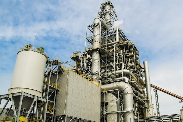 japan biomass electricity generator