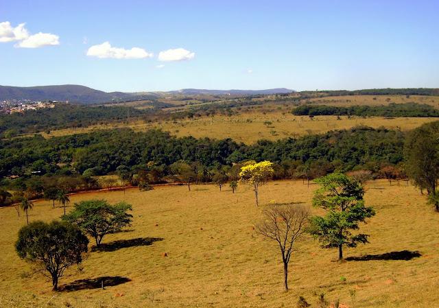 Municipio de Conceição do Pará, à 4 km de Pitangui (Minas Gerais), 20 juillet 2010. Photo : Nicodemos Rosa