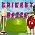 Play Cricket Match Game