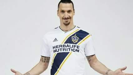 26 Bizzare Zlatan Ibrahimovich Facts