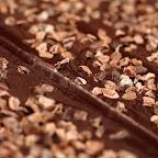 csoki153.jpg
