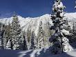 Snowshoeing White Pine - 2
