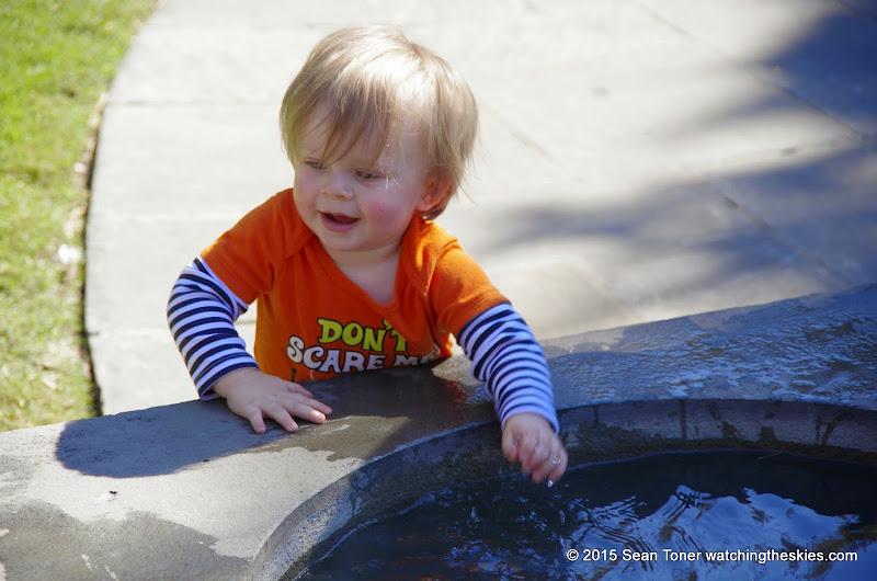 10-26-14 Dallas Arboretum - _IGP4342.JPG