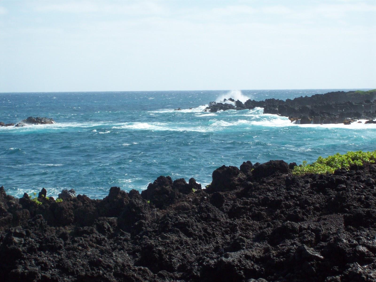 Hawaii Day 5 - 114_1537.JPG