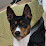 Michelle Hogan's profile photo