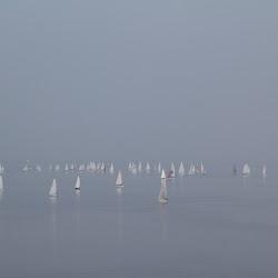 Dauphin Island Race 2014