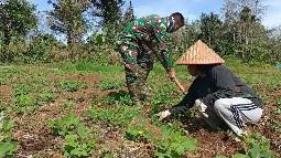 Bertani Kacang Tanah, Satgas Senang