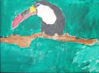 Toucan by EJ