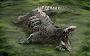 (Ulasan Animasi) Mulut Besar SCP 682
