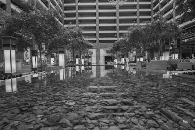 The atrium lobby of the Hilton Anatole and beautiful reflecting pool are works of art themselves.