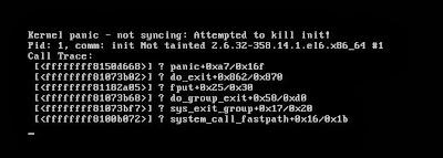 Kernel Panic LVM
