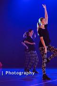 Han Balk Voorster Dansdag 2016-4384-2.jpg