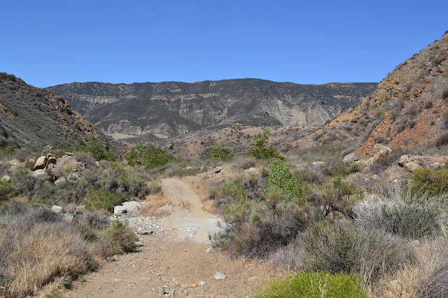 Warm Springs Fish Creek as it enters the canyon