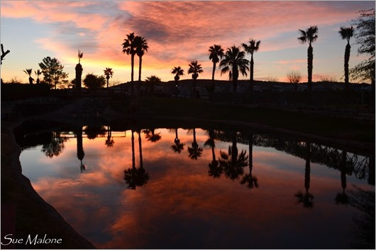 sunrise from Catalina spa-5