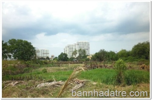 ban-nha-ban-dat-binh-chanh-590_1