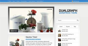 Dualgraph WordPress theme.
