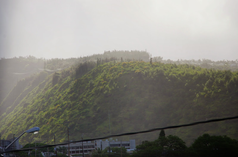 06-18-13 Waikiki, Coconut Island, Kaneohe Bay - IMGP6935.JPG