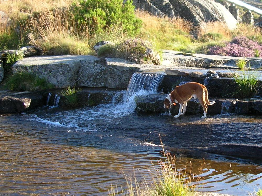 2014 · Laguna del Duque, reponiendo H2O
