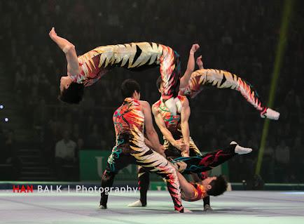 Han Balk Unive Gym Gala 2014-2615.jpg